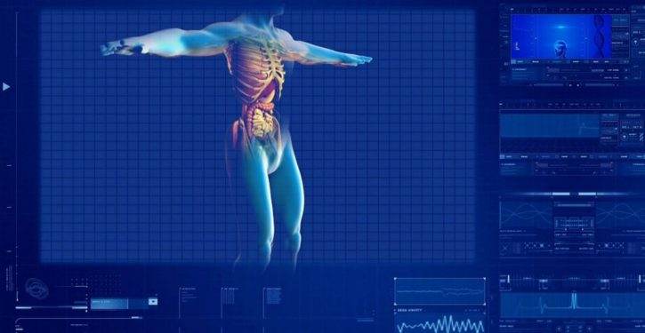 A new organ has been discovered inside the human body
