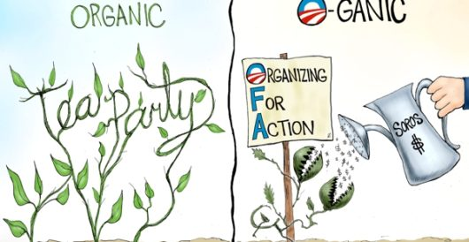 Cartoon of the Day:  How does your garden grow? by A. F. Branco