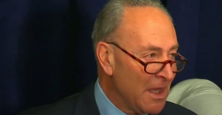 Former NYPD commissioner calls out weeping Schumer: 'You didn't cry at Ground Zero'