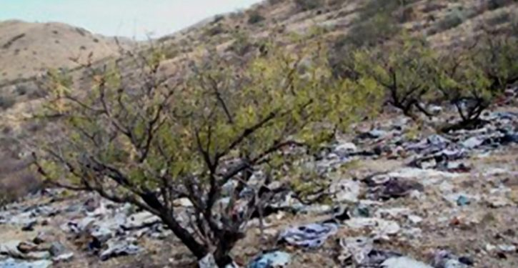 'Green' activists sue to impede border wall construction, citing environmental damage