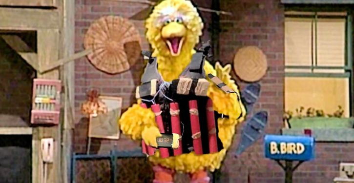 Defund PBS. Stop hiding a radical, pro-jihad agenda behind Big Bird