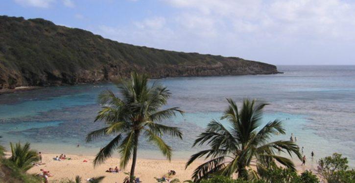 Amid COVID-19 travel warnings, lawmakers fly to Hawaiian resort