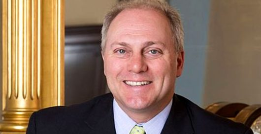 MSNBC propagandist accuses Rep. Steve Scalise of trying to murder Democrats by Joe Newby