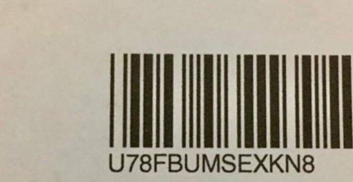 Same-sex marriage survey has naught word written into barcode
