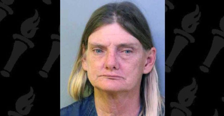 Florida woman charged with riding a horse under the influence