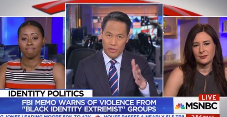 MSNBC panelist: White men 'pose the biggest threat to Americans'