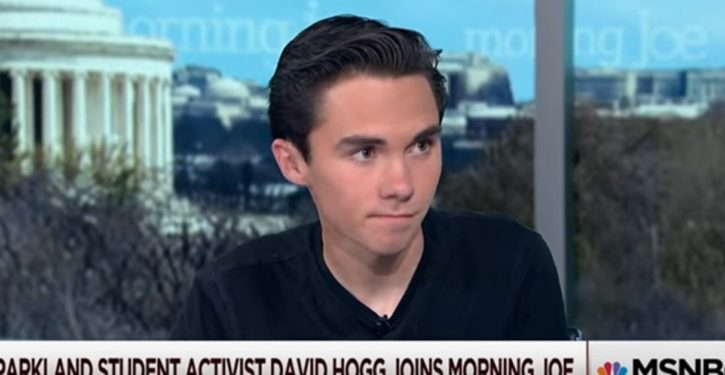 More from David Hogg: Pelosi 'old,' should 'move the f**k off the plate' to make way for younger Dems