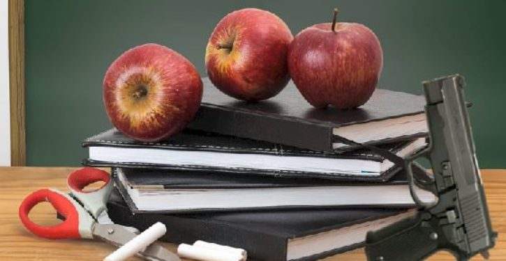 Teacher union pensions invest in firearm and ammunition makers