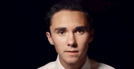 Hogg to the slaughter: New book titled '#Duped' shoots down all of David Hogg's rhetoric by Daily Caller News Foundation