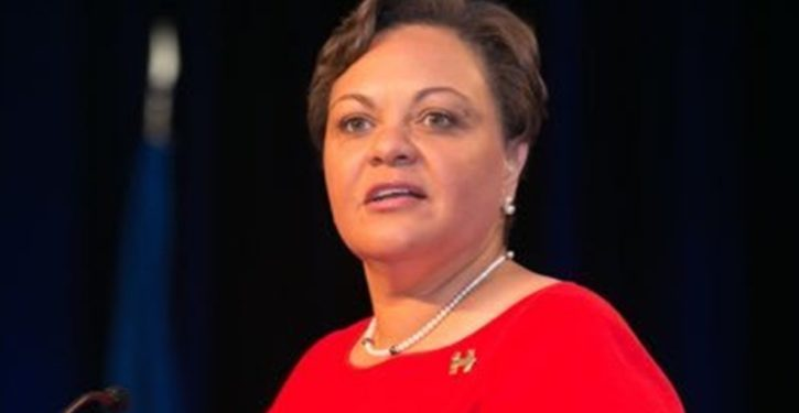 Vice chair of the DNC tweets 'Repeal the Second Amendment'