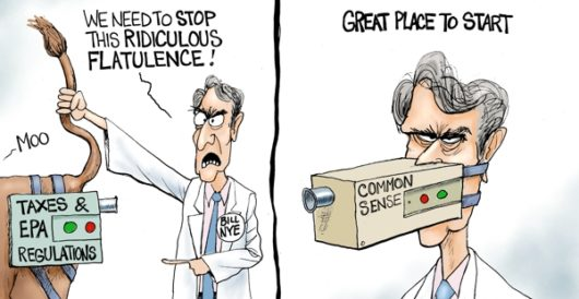 Cartoon of the Day: The (not a scientist) science guy by A. F. Branco