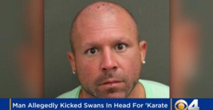 Move over, goat yoga; Florida man arrested for 'swan karate'