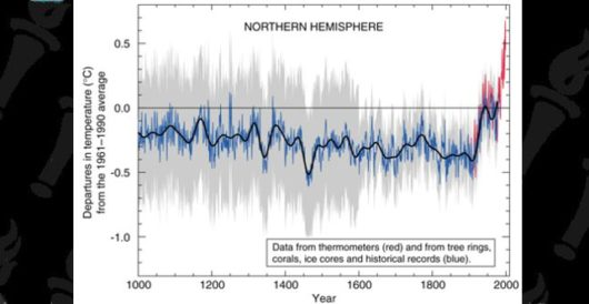 After 20 years, the 'hockey stick' graph that sparked a tidal wave of climate alarmism is still in dispute by LU Staff