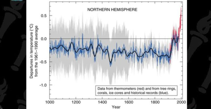After 20 years, the 'hockey stick' graph that sparked a tidal wave of climate alarmism is still in dispute