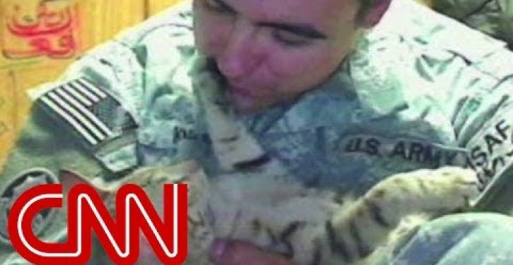 Simon: The most decorated military cat in history (Video)