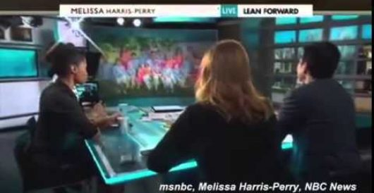 MSNBC's Melissa Harris-Perry apologizes for mocking Mitt Romney's adopted black grandchild by LU Staff