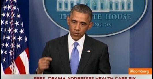 'Stupid enough': Hitting Obama where he lives by Howard Portnoy