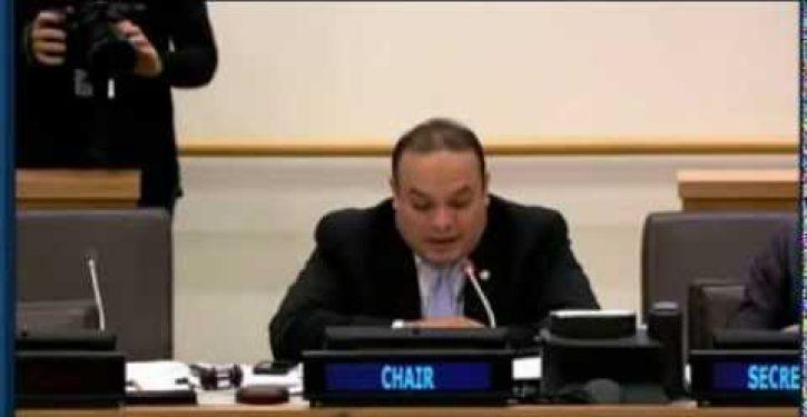 UN interpreter caught on hot mic questioning Israel-bashing (Video)