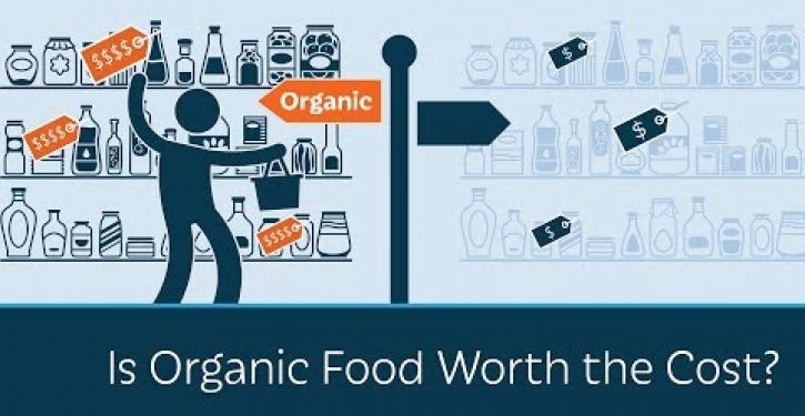 Video: Prager U ask whether it is worth paying more for organic food