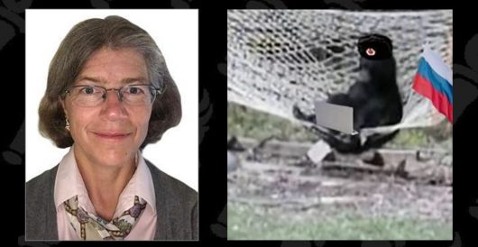 Change of narrative: Nellie Ohr and the deep dive back into 2015 by J.E. Dyer