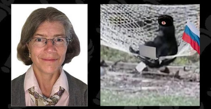Change of narrative: Nellie Ohr and the deep dive back into 2015