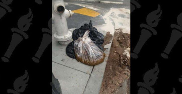 'Snapcrap': New app lets you report sidewalk poop to San Francisco's poo patrol