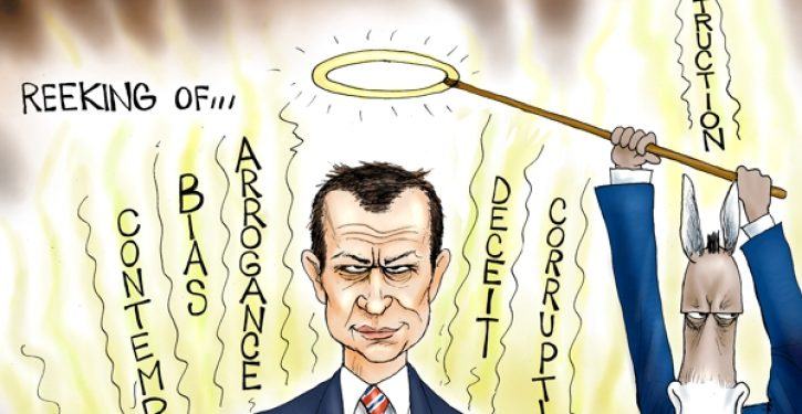 Cartoon of the Day: Strzok out
