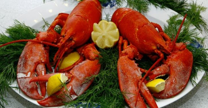 PETA hopes to build memorial where lobsters died in Maine crash