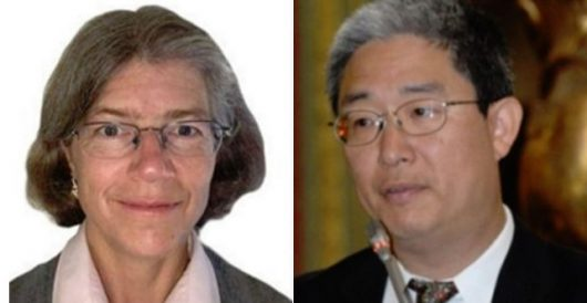 The Illustrated Swamp: New revelations about Nellie Ohr's role in 2016 by J.E. Dyer