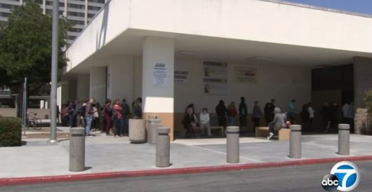 DHS chief orders review of state laws allowing driver's licenses for illegal aliens by Daily Caller News Foundation