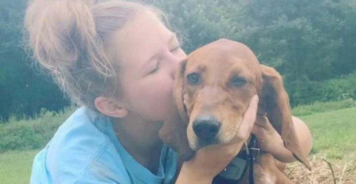 12-year-old and dog, hit by car, to be buried together