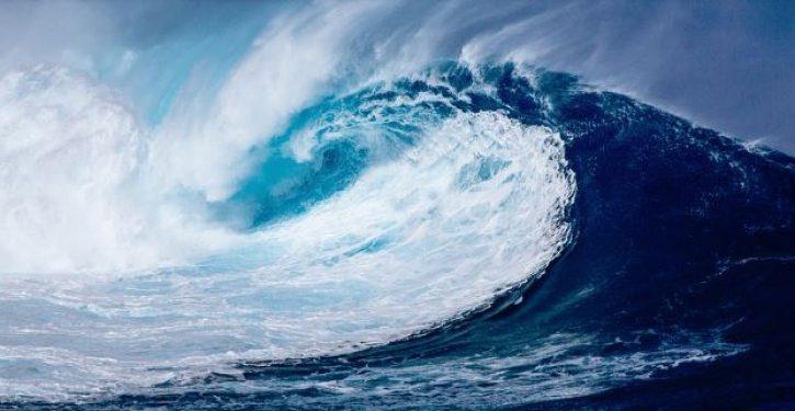 Blue wave destroys moderate Republicans