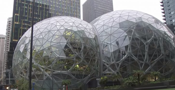 New Seattle 'homeless' tax drives Amazon out of long-planned location