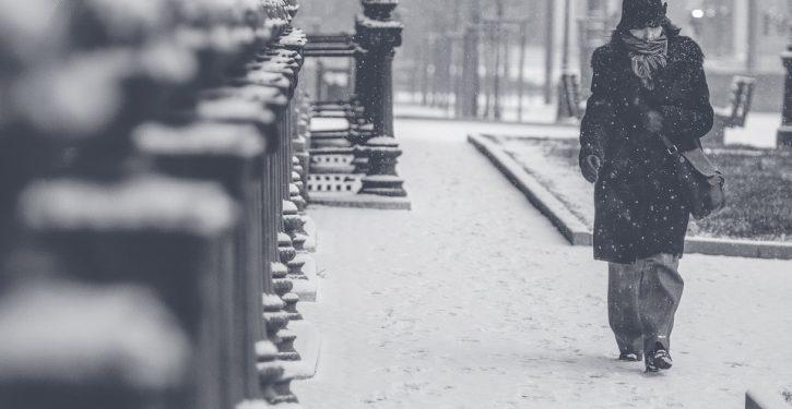 Over 20 dead in U.S. polar vortex, frostbite amputations feared