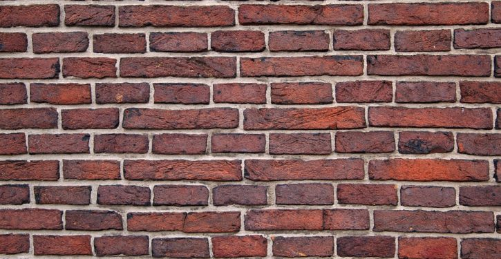 You flushed the toilet. They made some bricks.