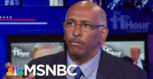Former RNC Chair Michael Steele: White supremacists like Christopher Hasson are 'Trump's people' by LU Staff
