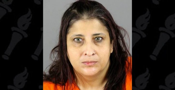 Wisconsin mom of 7 pleads to aiding ISIS terror plots; poisoning water supply, bomb how-tos