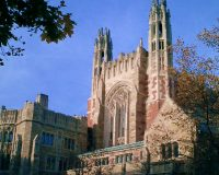 Yale's art history department to scrap survey course. Guess why.