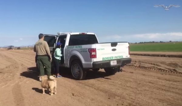 Illegal aliens brazenly walk right past group of congressmen as they cross the border by Daily Caller News Foundation