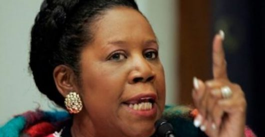 Sheila Jackson Lee and the .50-cal AR-15, 'as heavy as 10 boxes' by J.E. Dyer