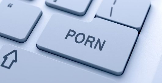 Porn and predators: Internet dangers parents should be aware of during coronavirus crisis by Daily Caller News Foundation