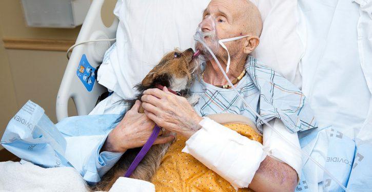 Vietnam Marine veteran in N.M. hospice care reunites with beloved dog one last time