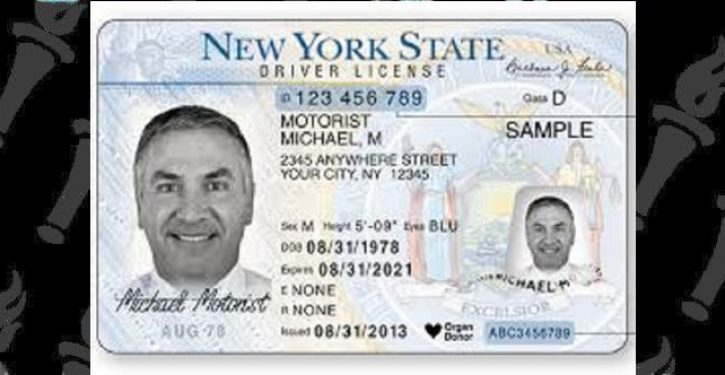 NYS begins offering driver's licenses to illegals, wait times at DMV interminable