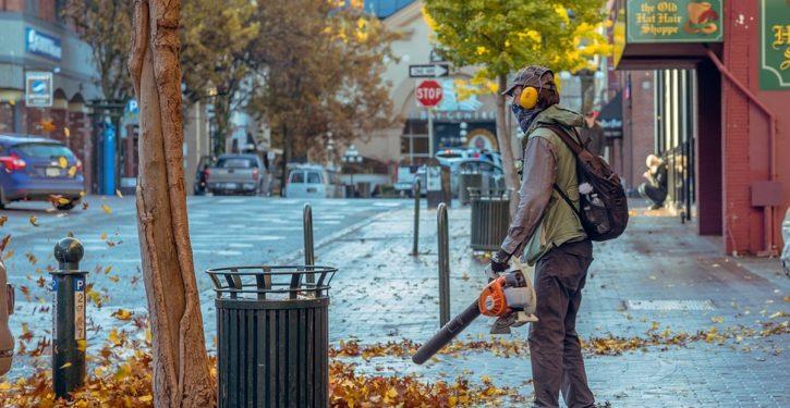 California eyes ban on gas-powered gardening tools