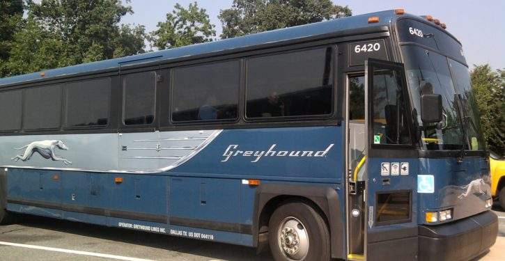 Greyhound will stop allowing CBP immigration checks on buses