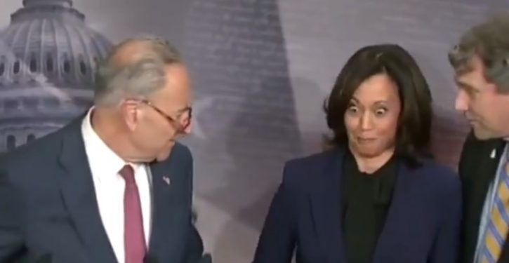 Who's your daddy? In midst of presser, Schumer warns his jokey colleagues to cool it