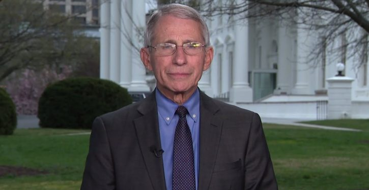 Fauci: Italy 'hit very badly' by coronavirus due to prevalence of Chinese tourists