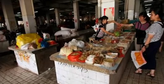 Some of the, er, delicacies available at a typical Wuhan wet market by Daily Caller News Foundation