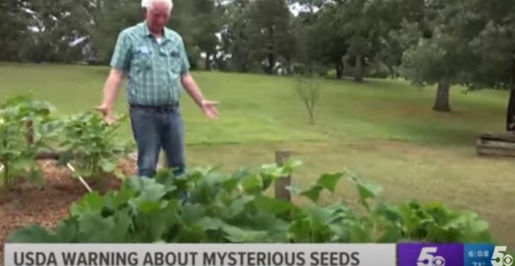 Yep: Guy planted mystery seeds from China