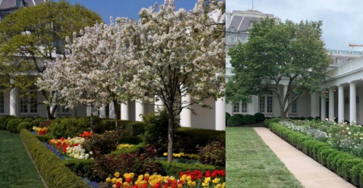 TDS alert: Reaction to Melania Trump's renovation of the White House Rose Garden